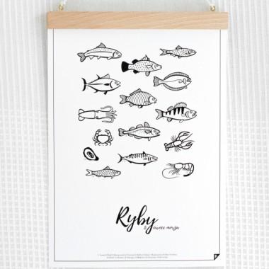 827-ryby-grafika-do-kuchni-follygraph-pl-01