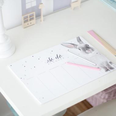 Solidny notatnik, organizer, planner. Estetyczny i nowoczesny.
