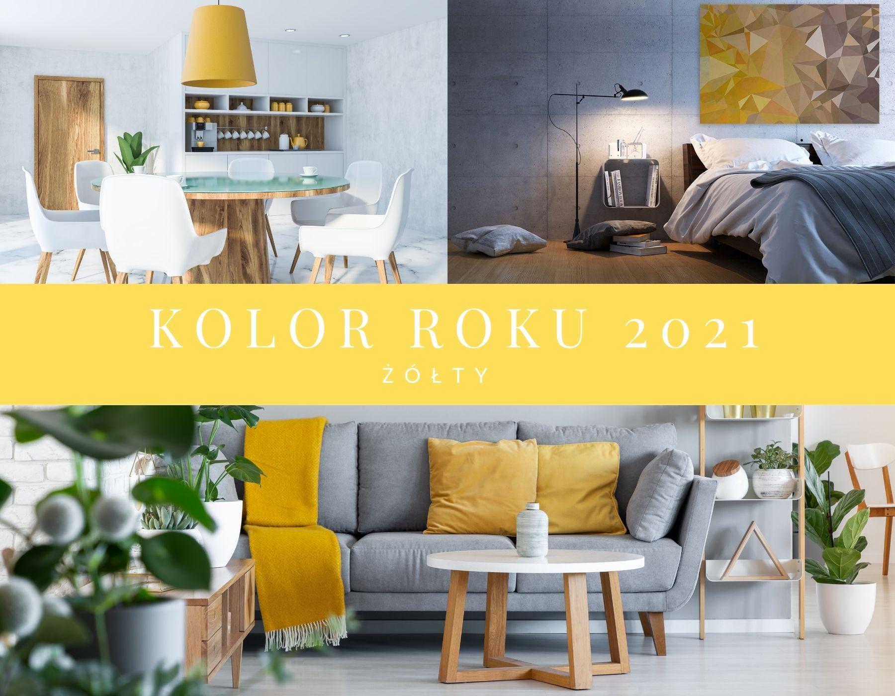 00-kolor-roku-2021