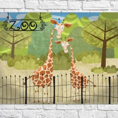 Plakat Giraffes