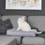 Szra/siwa poduszka, legowisko dla kota