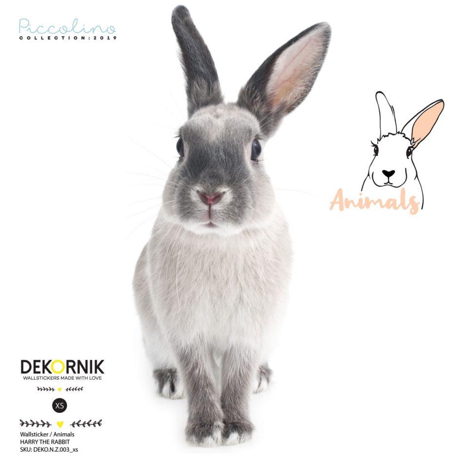 Naklejka na ścianę do pokoju dziecka - królik mini