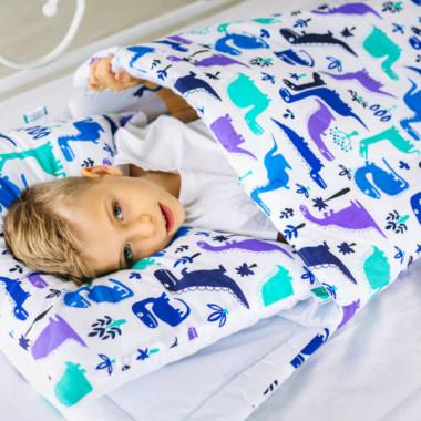 śpiworek ocieplany Juniora 70x140cm dinozaury