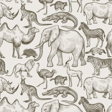 African Zoo Beige Tapeta-