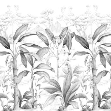 Rajska dżungla Black&White Tapeta