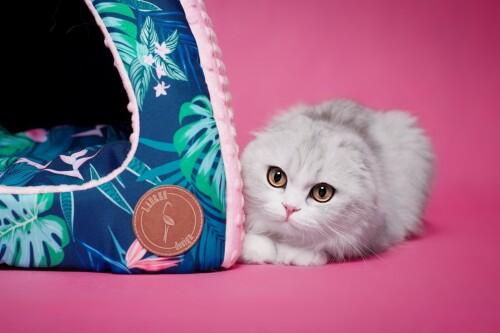 budka dla kota od Lauren design - Bella Tropic