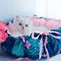 okrągłe legowisko Daisy od Lauren design - Tropic